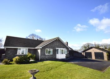 Thumbnail 4 bedroom bungalow for sale in Sandrock Lane, Trefonen, Oswestry