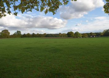 Thumbnail Equestrian property for sale in Millfields, Millfield Lane, Little Hadham, Ware, Hertfordshire