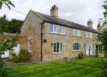 Thumbnail 3 bed semi-detached house to rent in Milbourne, Nr Ponteland, Northumberland