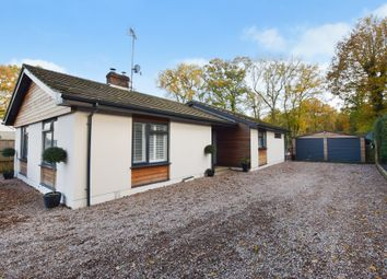 Thumbnail 4 bed detached bungalow for sale in Hamstreet Road, Shadoxhurst, Ashford