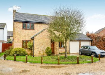 Thumbnail 4 bed detached house to rent in Avocet Close, Kelvedon, Colchester