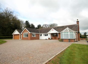 Thumbnail 4 bed detached bungalow for sale in Upton Bishop, Ross-On-Wye