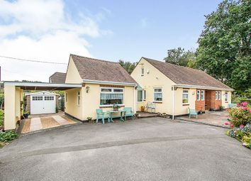 Thumbnail 4 bed detached bungalow for sale in Stanfield Road, Ferndown