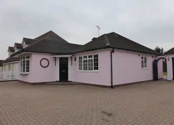 Thumbnail 3 bed bungalow to rent in Chignal Road, Chelmsford