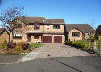 Thumbnail 4 bed detached house to rent in Arkwright Court, North Berwick