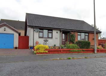 Thumbnail 2 bed bungalow for sale in Craignair Park, Annan
