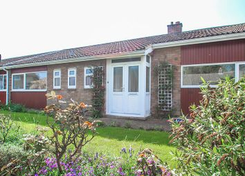 Thumbnail 3 bedroom bungalow to rent in De Freville Road, Great Shelford, Cambridge