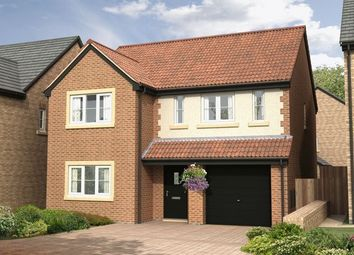 Thumbnail 4 bed detached house for sale in The Sycamore At Nursery Gardens, Stannington, Morpeth (1445 Sq.Ft.)