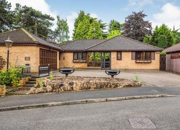 Thumbnail 3 bed bungalow for sale in The Dene, Rectory Gardens, Wollaton