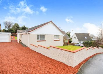 Thumbnail 4 bedroom detached bungalow for sale in Huntly Drive, Cambuslang, Glasgow