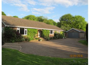 Thumbnail 4 bed detached bungalow for sale in Dunkirk Road South, Faversham