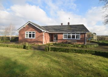 Thumbnail 4 bed detached bungalow to rent in Hadleigh, Suffolk