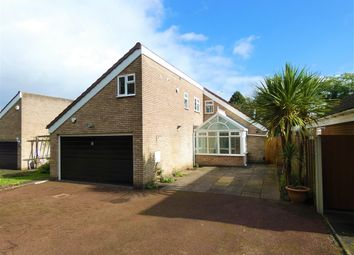 Thumbnail 3 bed detached bungalow to rent in Wadleys Road, Solihull, Solihull