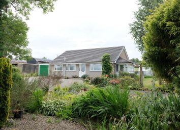 Thumbnail 3 bed detached bungalow for sale in Heads Nook, Brampton
