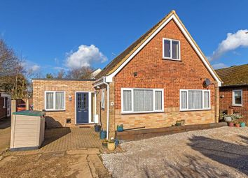 Thumbnail 4 bedroom detached house for sale in St. Thomas's Road, Luton