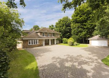 Thumbnail 5 bed detached house to rent in Old Avenue, West Byfleet, Surrey