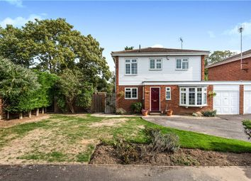 Thumbnail 4 bed detached house for sale in Manor Leaze, Egham, Surrey