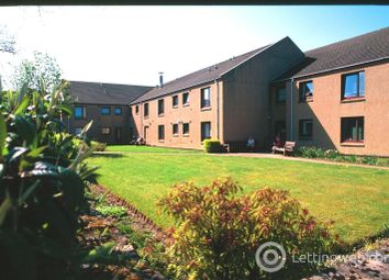Thumbnail Studio to rent in Adam Grossert Court, Stenhousemuir, Larbert