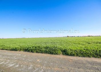 Thumbnail Land for sale in Tersefanou, Cyprus
