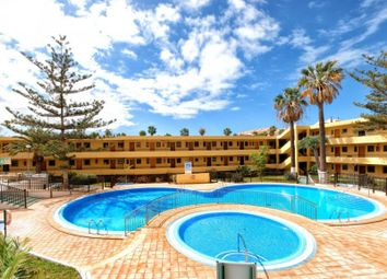 Thumbnail Studio for sale in Los Cristianos, Torres Del Sol, Spain