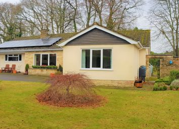 Thumbnail 4 bed detached bungalow for sale in High Bank, West Hill, Ottery St. Mary