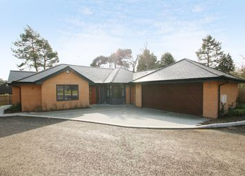 Thumbnail 3 bedroom detached bungalow for sale in Poppy Close, St Ives Park, Ringwood
