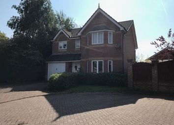 Thumbnail 4 bed detached house to rent in Blue Ridge Close, Great Sankey, Warrington