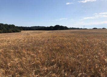 The Nineveh Lane Land, Nineveh Lane, Benenden, Cranbrook TN17. Land for sale