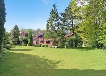 Thumbnail 4 bedroom detached house for sale in Brickfields, Strumpshaw, Norwich
