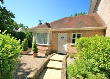 Thumbnail 2 bedroom bungalow for sale in Brownsea View Avenue, Poole