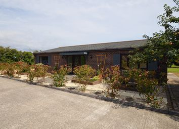 Thumbnail 3 bedroom detached bungalow to rent in Easton Lane, Almodington, Chichester
