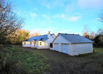 Thumbnail 4 bed bungalow for sale in Skeagh Road, Kinallen, Dromore
