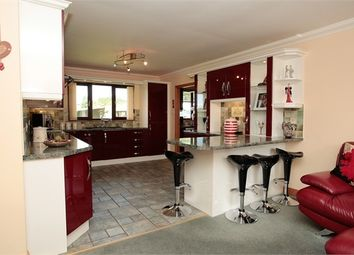 Thumbnail 4 bed detached bungalow for sale in Hall Road, Ecclefechan, Lockerbie, Dumfries And Galloway