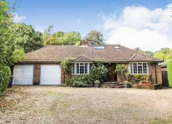Thumbnail 5 bed detached bungalow for sale in Harts Lane, Burghclere, Newbury