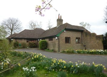 Thumbnail 4 bed bungalow to rent in Maidstone Road, Sutton Valence, Kent