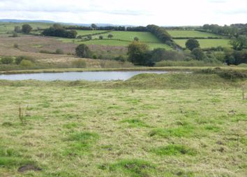 Thumbnail Land for sale in Bwlchllan, Talsarn, Lampeter