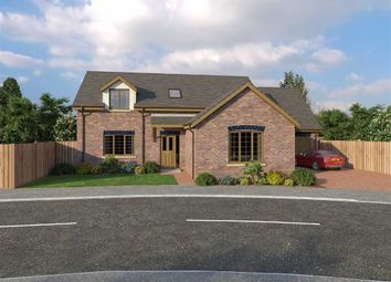 Thumbnail 4 bed detached bungalow for sale in Glanfryn Court, Heol Cwmmawr, Dreafch, Nr Cross Hands