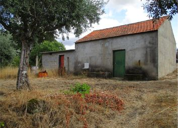 Thumbnail Farm for sale in Fundão, Castelo Branco, Central Portugal