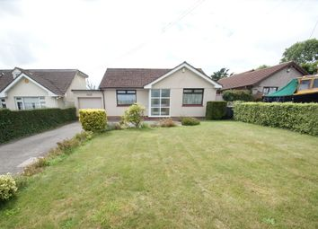 Thumbnail 2 bed detached bungalow for sale in Kings Ash Road, Paignton
