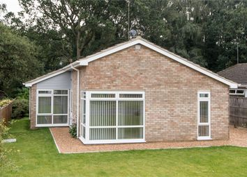 Thumbnail 3 bed detached bungalow for sale in Willow Road, South Wootton, King's Lynn