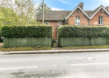 Shaston Road, Stourpaine, Blandford Forum DT11. 4 bed semi-detached house for sale