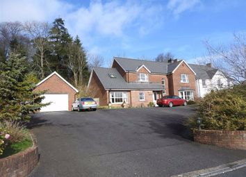 Thumbnail 3 bed detached house for sale in Glanarberth, Llechryd, Cardigan, Ceredigion