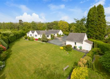 Thumbnail 4 bed detached bungalow for sale in Colehayes, Bovey Tracey, Newton Abbot, Devon