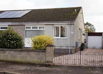 Thumbnail 2 bed semi-detached bungalow for sale in James Street, Carnoustie