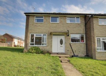 Thumbnail 4 bed semi-detached house to rent in Dahlia Walk, Colchester