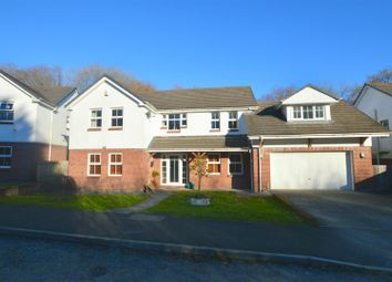Thumbnail 5 bed detached house to rent in Tabernacle Road, Glanamman, Ammanford