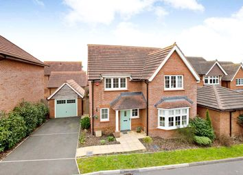 Thumbnail 4 Bed Detached House For Sale In Brick Kiln Close Exeter