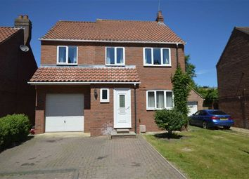 Thumbnail 5 bed detached house for sale in Boardman Park, Brandesburton, East Yorkshire