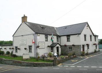 Thumbnail Hotel/guest house for sale in Llechryd, Ceredigion