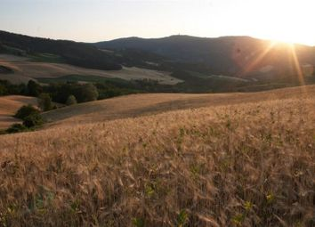 Thumbnail Land for sale in Bruscoli, Firenzuola, Tuscany, Italy